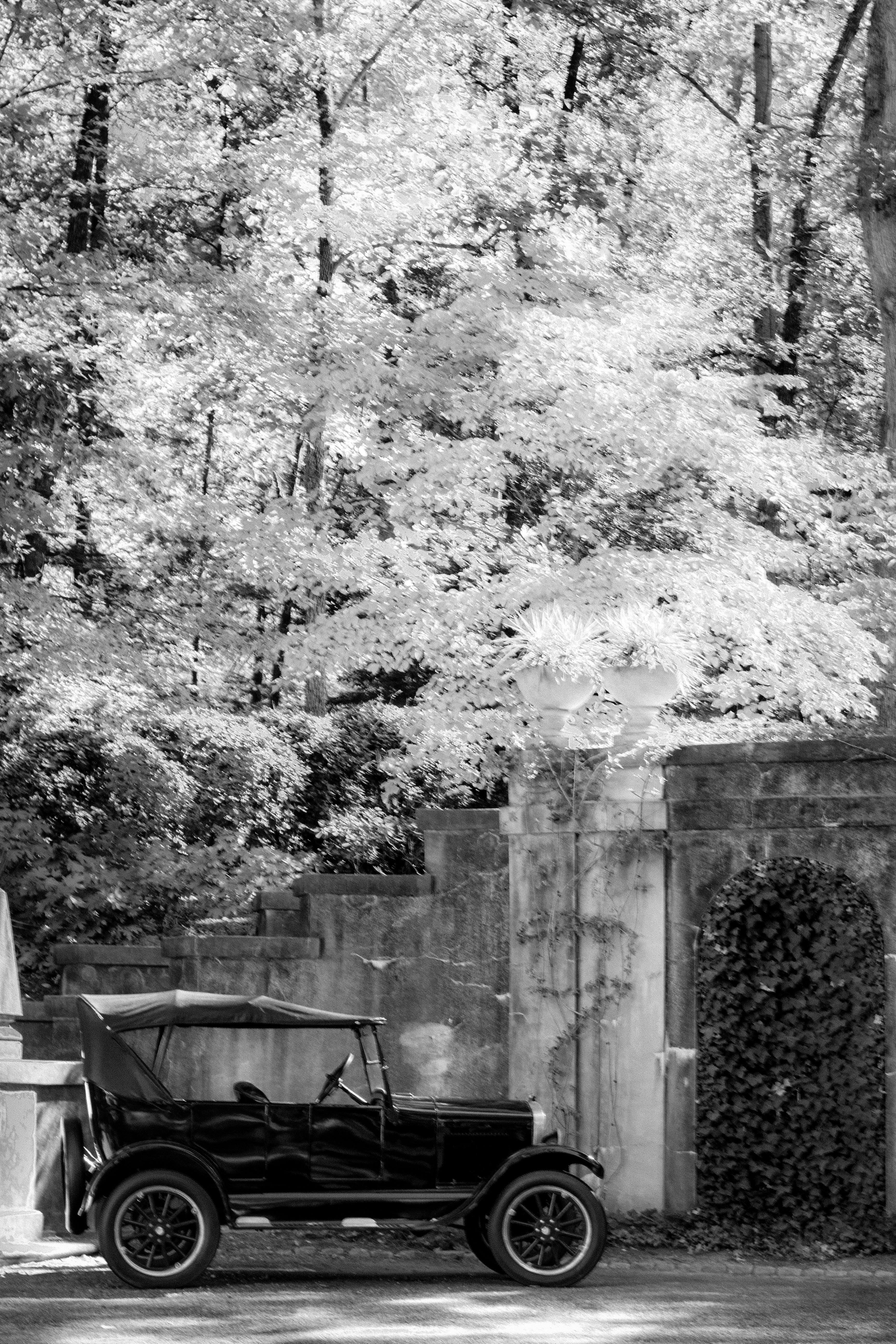 Δωρεάν στοκ φωτογραφιών με vintage αυτοκίνητο, δέντρα, δέντρο, ιστορικός