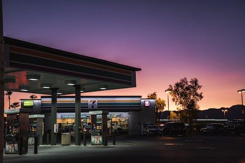 Бесплатное стоковое фото с dakr, восход, закат, индейка