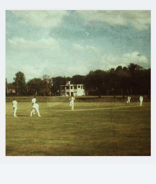 Kostnadsfri bild av boll, cricket, enhetlig, fält