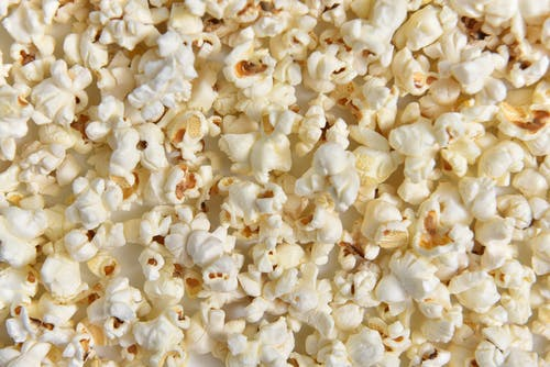 White Popcorn on White Background