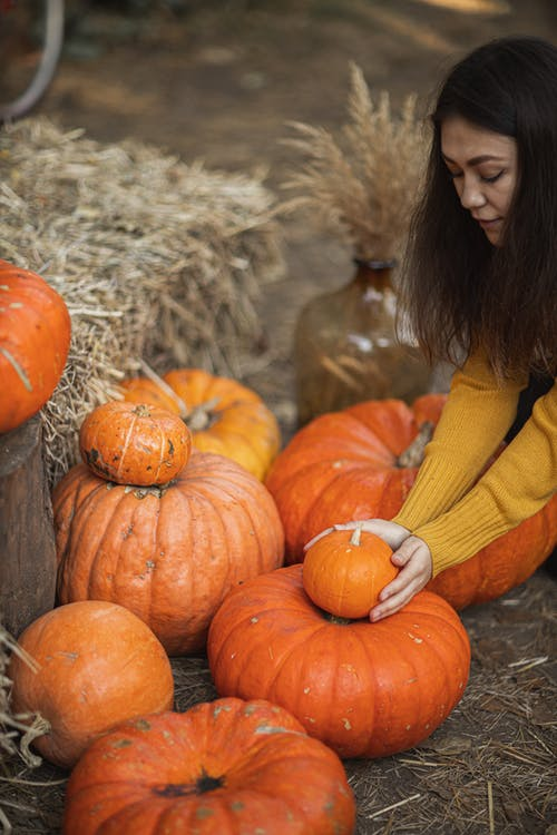 Woman Holding A Small Pumpkin