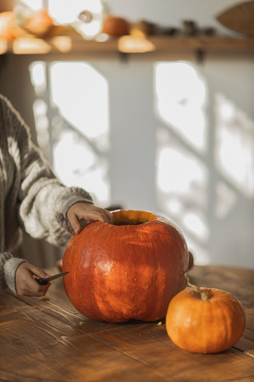 Person Holding Orange Pumpkin in Front of Window