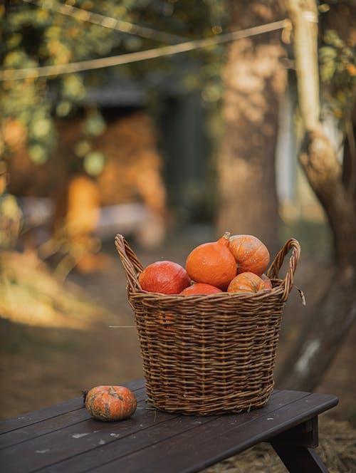 Orange Pumpkins in Brown Woven Basket