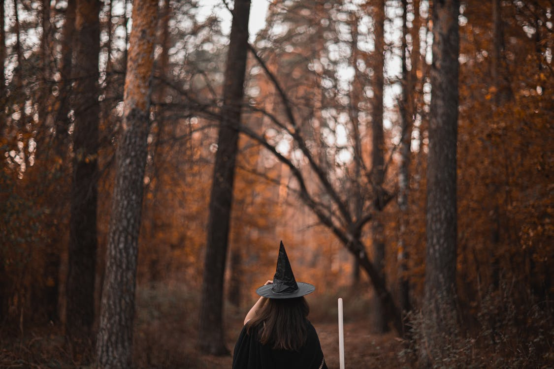 Person in Black Hat Standing in Forest