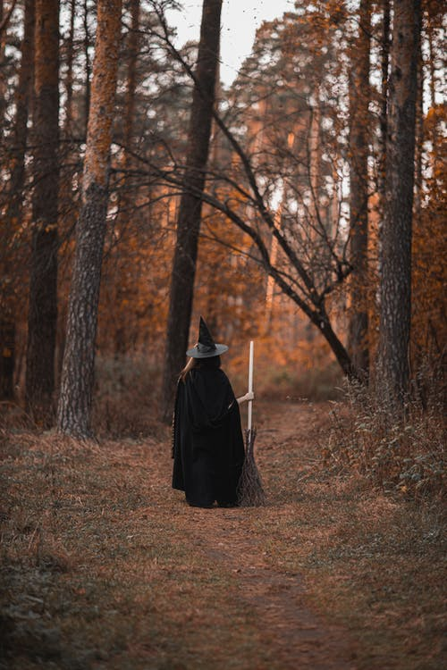 Person In Witch Costume Standing in the Woods