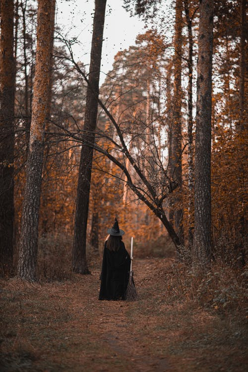 Person In Witch Costume Standing in the Middle of the Woods