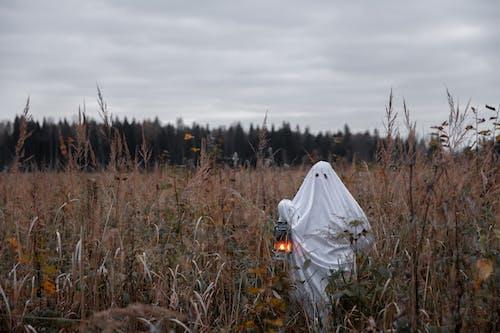 Personne En Costume De Fantôme Debout Dans Un Champ D'herbe Avec Une Lanterne
