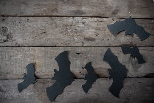 Black Wall Art Of Cutout Bats