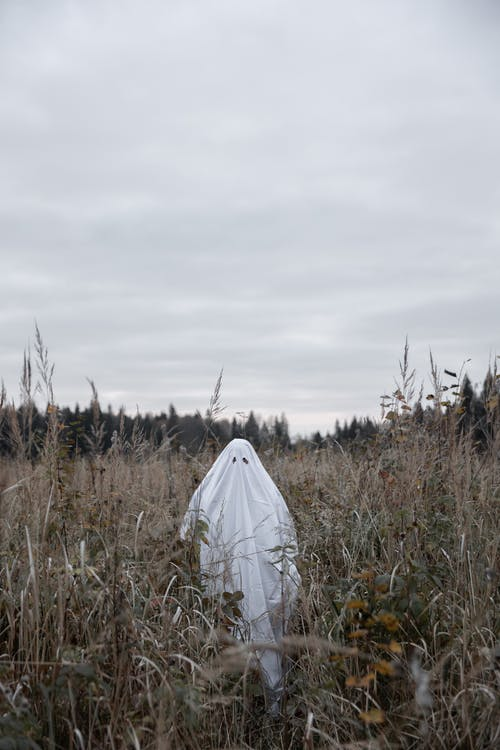 Person In Ghost Costume on Brown Grass Field