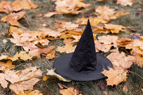 Black Witch Hat on Dried Leaves