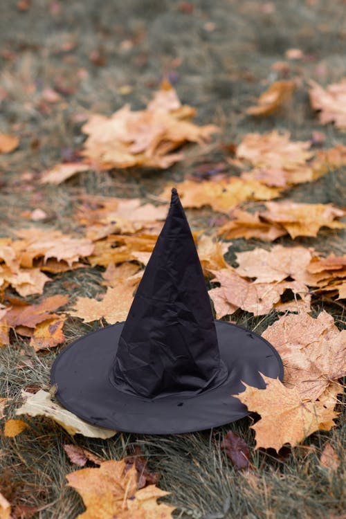 Black Hat on Dried Leaves