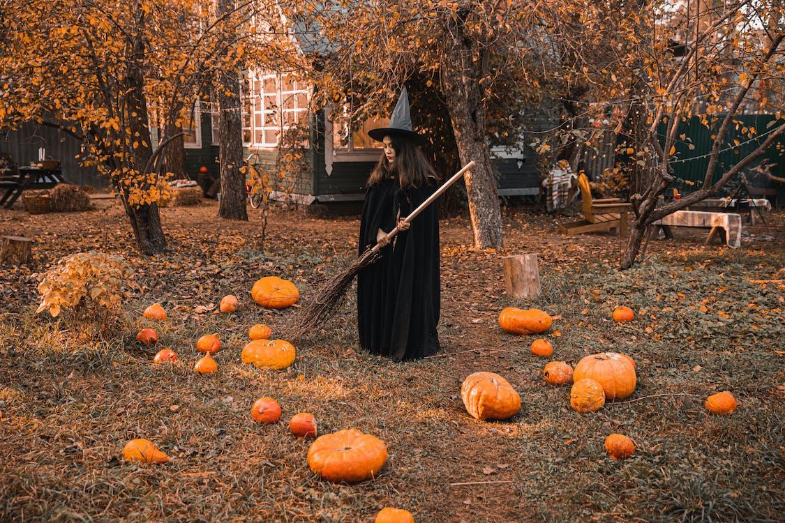 Woman in Black Dress Standing on Brown Dried Leaves