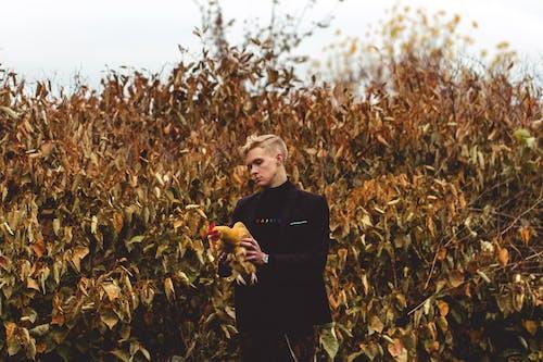Základová fotografie zdarma na téma blond, deštivé, dospělý