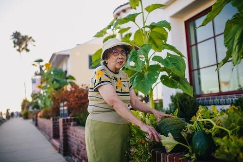 Elderly Woman Checking on Her Pumpkin Plant