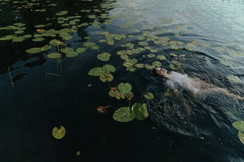 Person Swimming on Water With Green Leaves