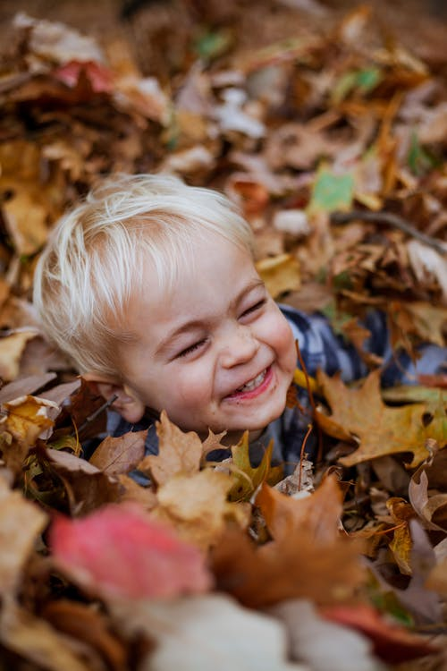 Adorable little boy in fallen leaves