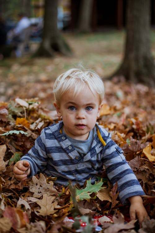Charming boy in pile of fallen leaves