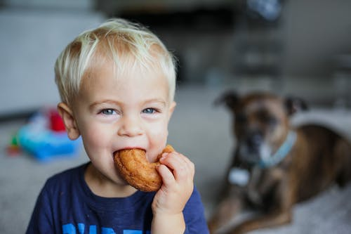Adorable little boy biting delicious bagel while spending time at home with dog on blurred background