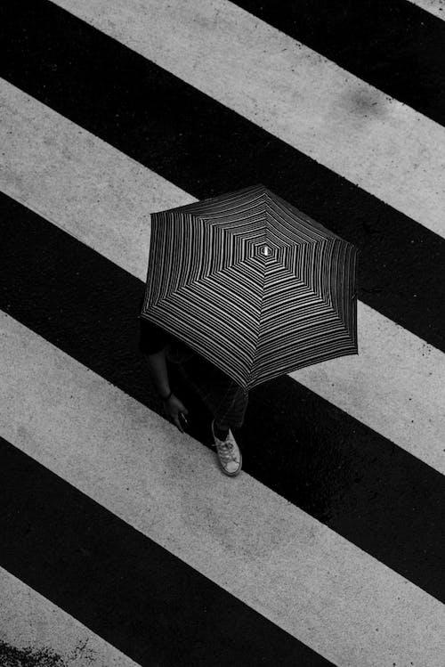 Unrecognizable person with umbrella on crosswalk