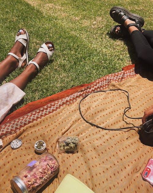 Faceless black girlfriends resting on lawn