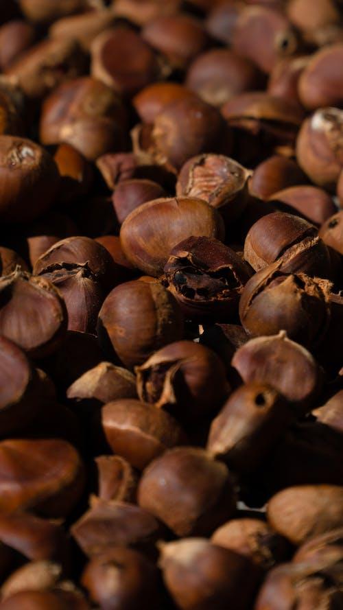 Δωρεάν στοκ φωτογραφιών με αγορά, αγριοκάστανο, καρύδι