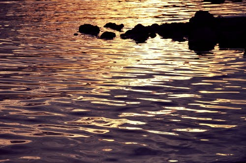 Free stock photo of ocean, purple, rock, sea