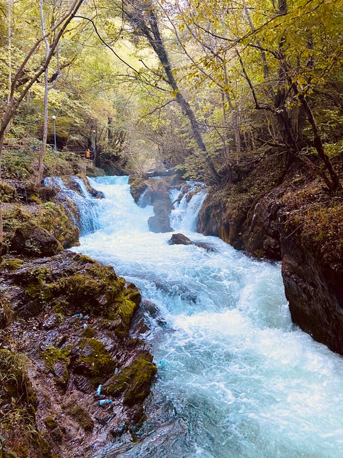Fotos de stock gratuitas de belleza en la naturaleza, cascada, fondo cascada, hermosa naturaleza