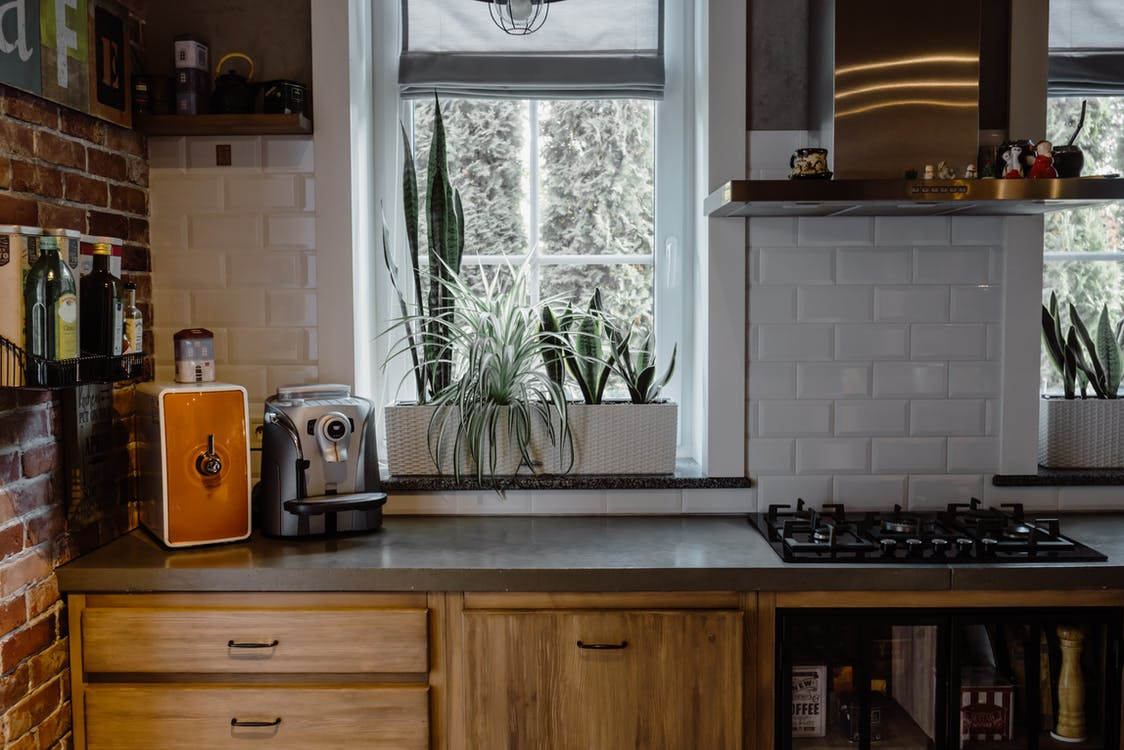 Kitchen Room With Ornamental Plants