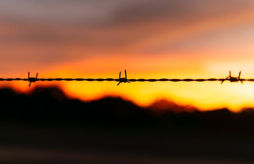 Free stock photo of background, backlit, barbed, barbed wire