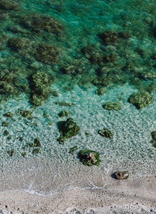 Foto profissional grátis de água, areia, beira-mar, claro