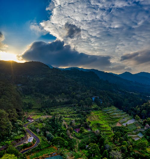 Breathtaking view of valley with green grassy mountains with field near trees and plants with road under cloudy sky in summer day at sundown in nature