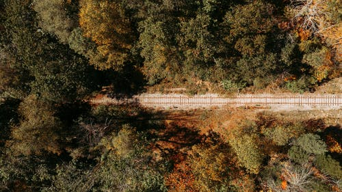 Drone view of rural railroad through green forest