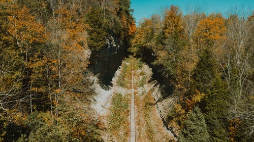 Drone view of rural railway running through thick woodland on early autumn sunny weather