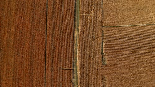 Aerial view of agricultural fields and rural road