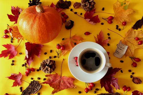 White Ceramic Mug on White Ceramic Saucer Surrounded by Red and Yellow Leaves