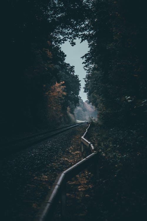 Бесплатное стоковое фото с вода, действие, дневной свет, дорога