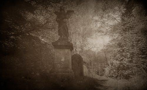 Kostnadsfri bild av äldre, begravning, gammalt foto, gråskale