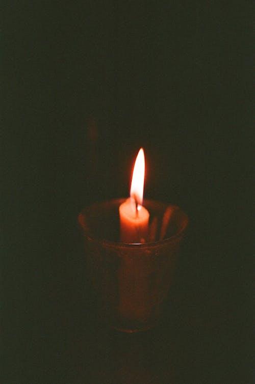 Foto profissional grátis de câmera analógica, câmera de filme, fm10, lamparina