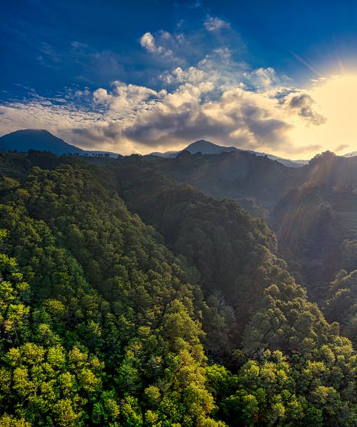 Picturesque landscape of mountains covered with green trees in sunny day