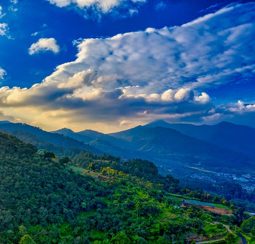 Mountainous terrain covered with green plants in sunny day