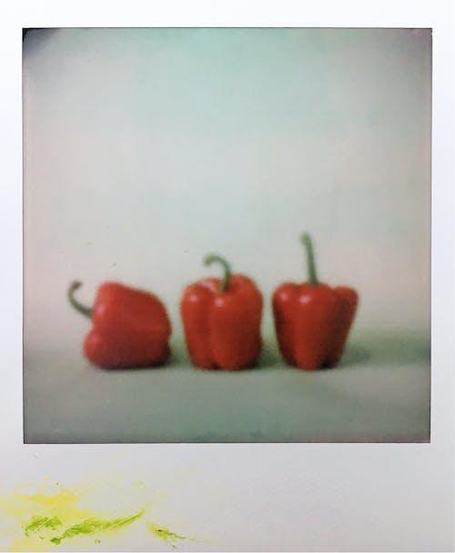 Gratis arkivbilde med bær, blad, bøker