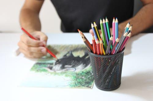 Immagine gratuita di arte, arti e mestieri, artistico