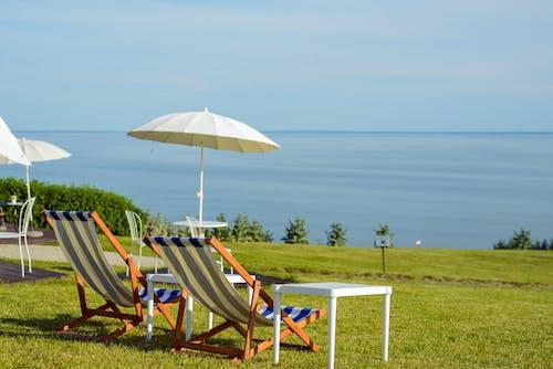 Grassy seacoast with deckchairs under umbrellas