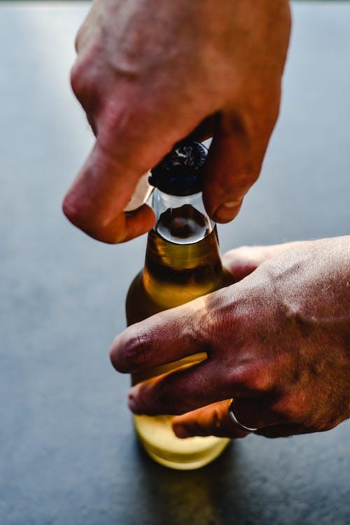 Kostenloses Stock Foto zu alkohol, alkohol flasche, berauscht, bier