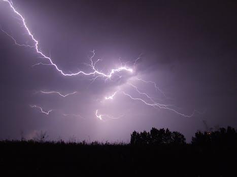 Lightning Crashed Under Trees During Night Time