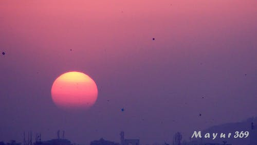 Free stock photo of evening sun, kites, sun