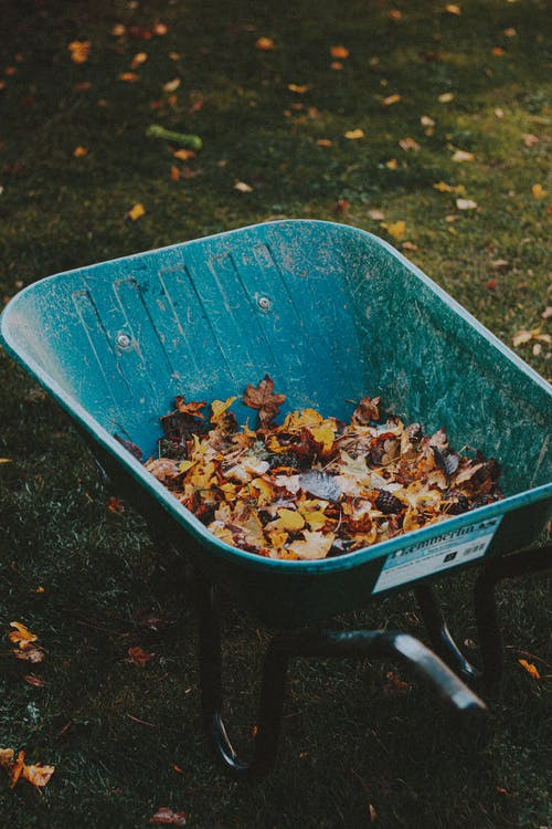 From above of garden cart with bright autumn leaves on grass meadow in daylight