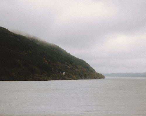 Spectacular view of rippled ocean near greenery ridge under cloudy sky in fog in daylight