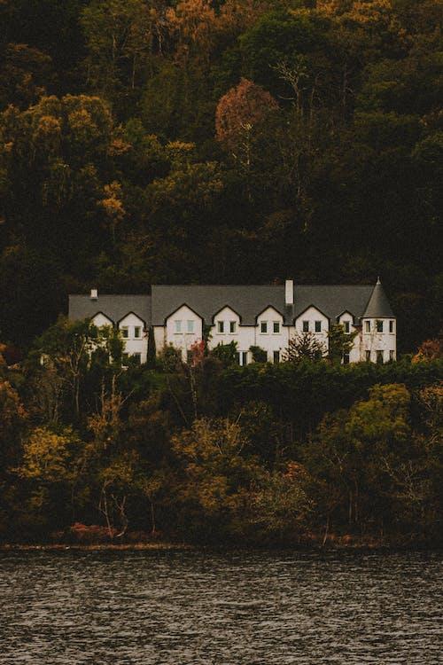 Old building facade between autumn trees near sea