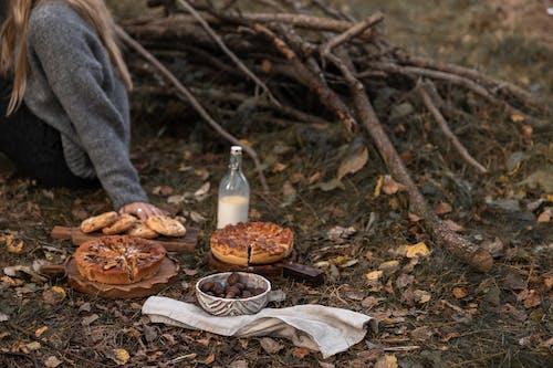 Ảnh lưu trữ miễn phí về cà phê, cây, Chân dung, con gái